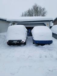 more snowmageden 2019 by mouseanderson