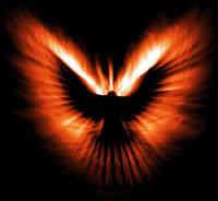 Phoenix by Kechu