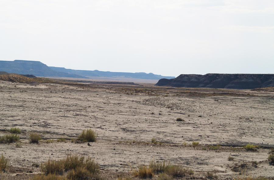 Desert 02 by dappledstock