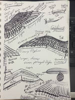 Studying flight by Laanuei