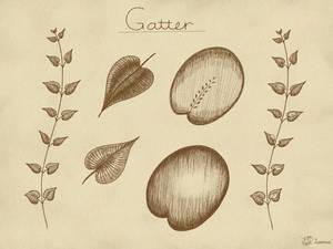 Gatter