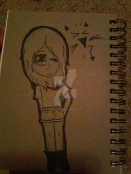 the back of my new sketch book