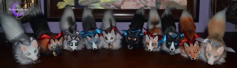 Fox Rainbow