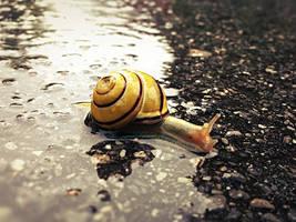 Slow down. Take it easy. by Thonixx