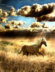 Fields of Gold by JarethsQueenAlora