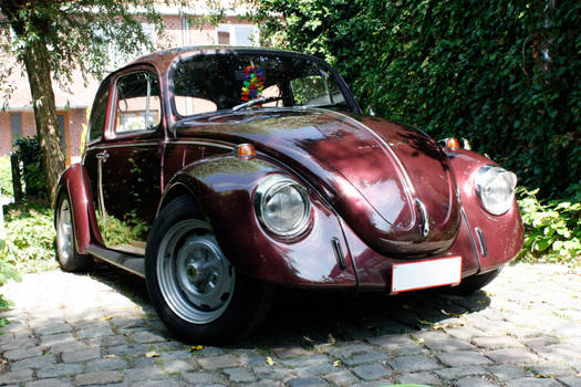 My VW Beetle