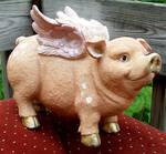 Flying Pig 7