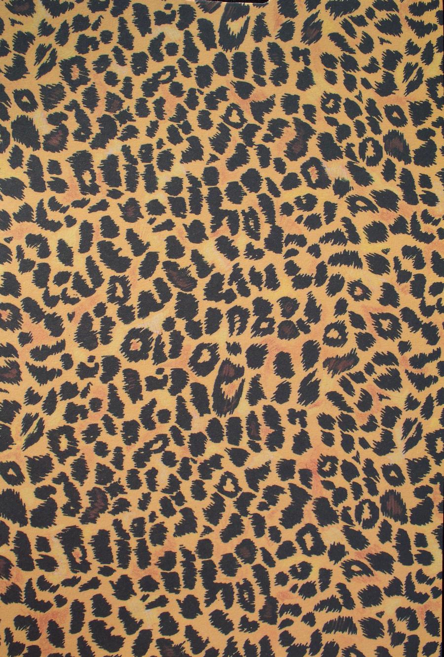 Leopard by Penny-Stock