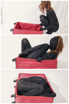 Luggage encasement