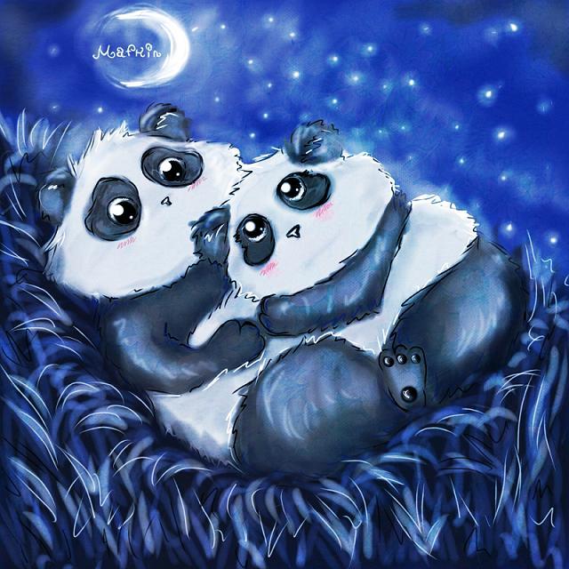 night for pandas by Mafkin