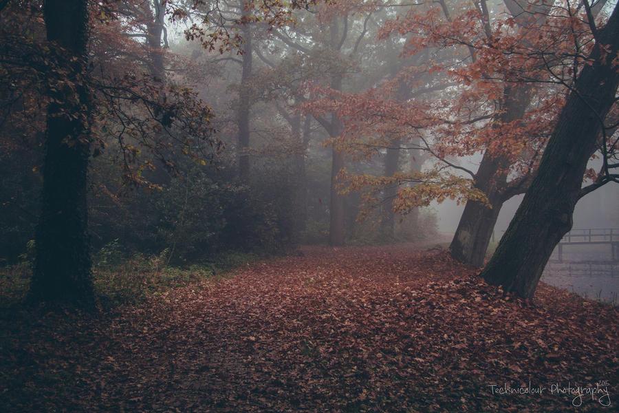 Hiljainen Maa by Yuukon