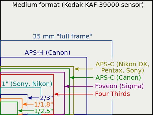 490px-Sensor sizes overlaid inside.svg[1] by Yuukon