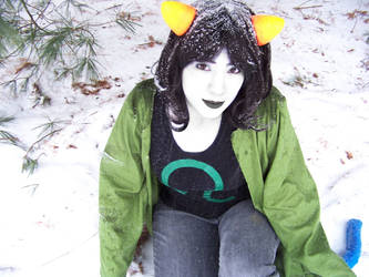 Nepeta: play in the snow by ColorCoatedCalico