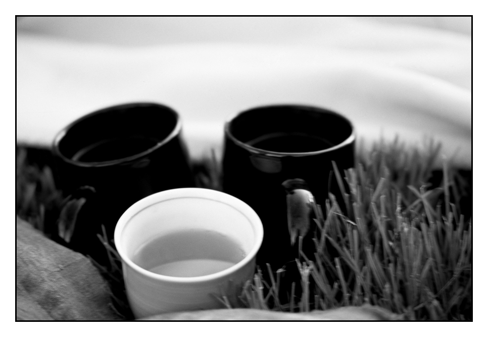 Teacups in the Grass