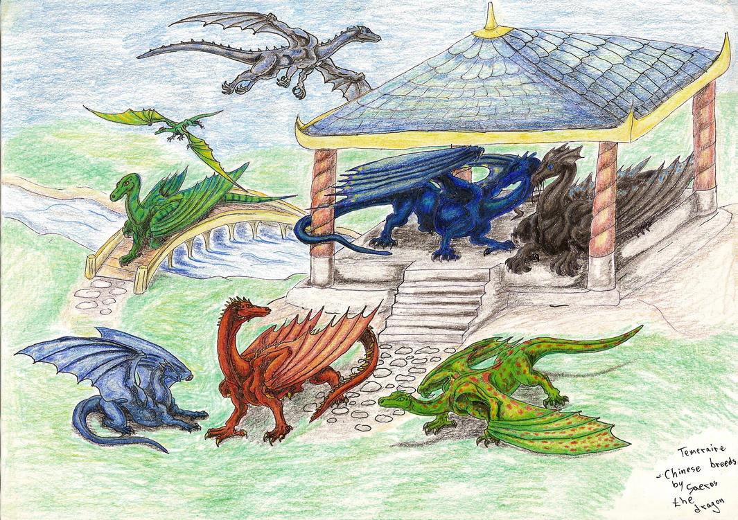 Temeraire Chinese Breeds By Saeros2006 On DeviantArt