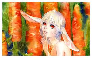 Dreams of carrots by kir-tat