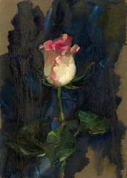 rose on blue by kir-tat