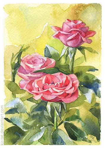 3 roses by kir-tat