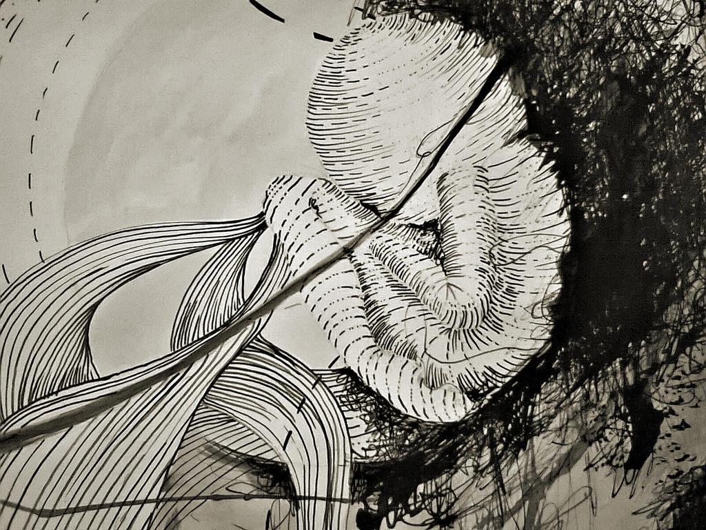 Fetus by AnnaEPuiu