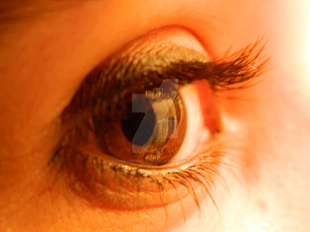 Eye Shot by ThroughTheEyePiece