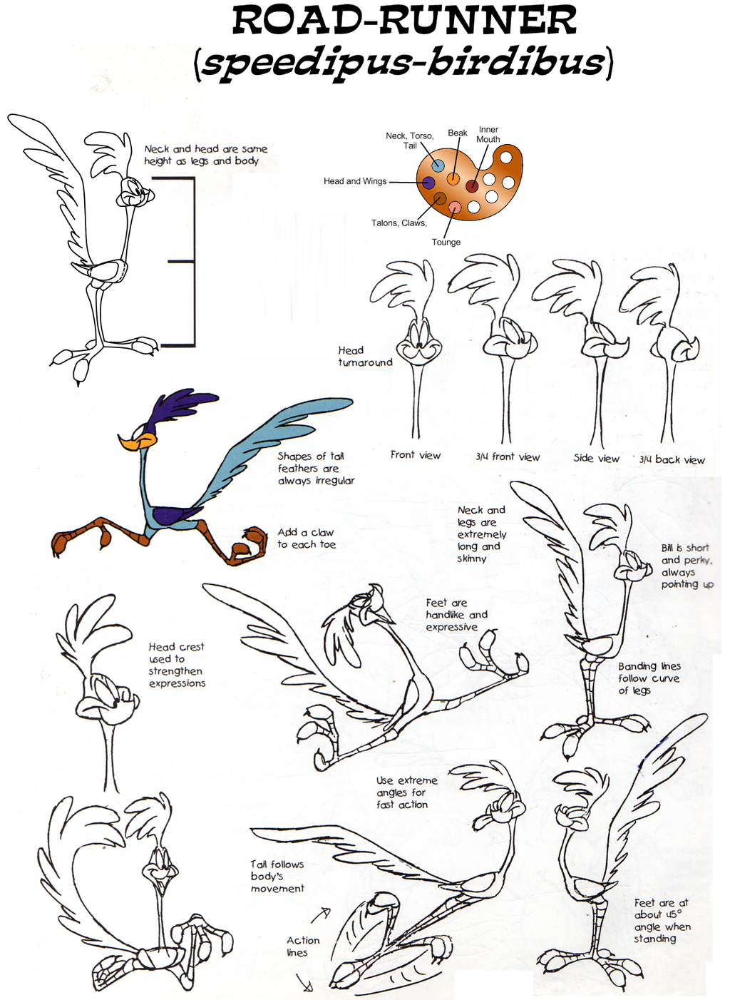 Road Runner Model Sheet 381694389 also Chuck Jones 180952159 in addition Model Sheets as well  additionally Yosemite Sam Model Sheet Ver 3 426765027. on elmer fudd model sheets