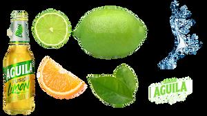 Lemon Poster Tutorial Asset