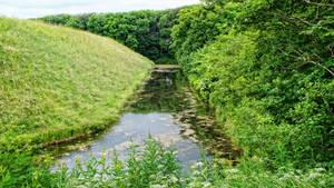streams  by piaglud