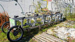 Bicycle for 11 people DSC01512red by piaglud
