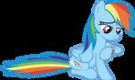 Rainbow Waits