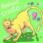 Manguo the cat
