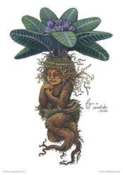 fig01 Mandrake Childe by emmalazauski