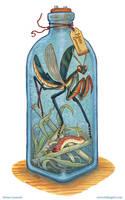 Bottled: Bugs! by emmalazauski