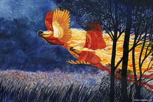 Firefowl by emmalazauski