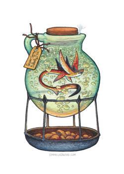 Bottled: Geyser Spring Butterfly Fish
