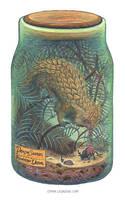 Bottled: Dragon Squirrel by emmalazauski