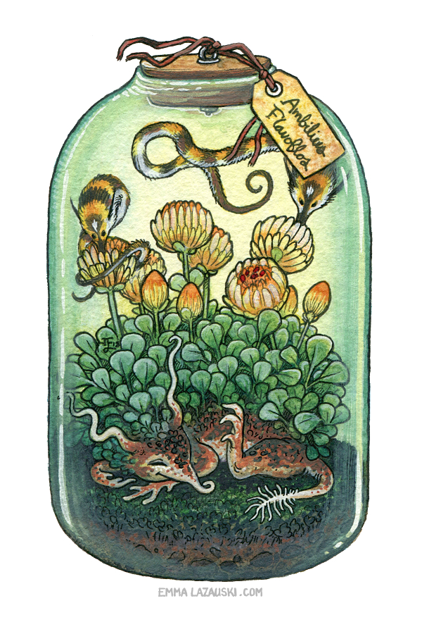 Bottled: Sleepy Flower and Bumble Pipwyrms by emmalazauski