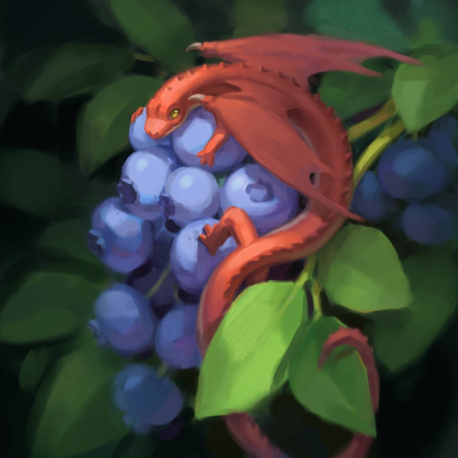 Tiny Blueberry Dragon