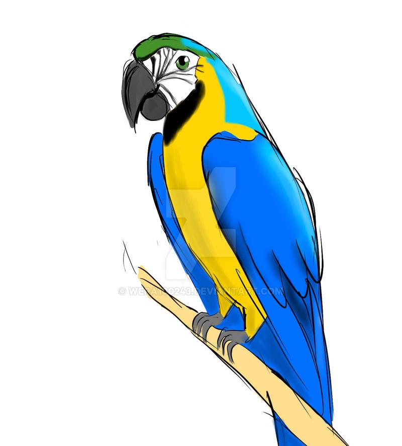Papuga by wera100243