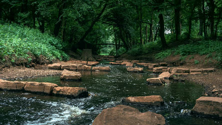 The really calm brook