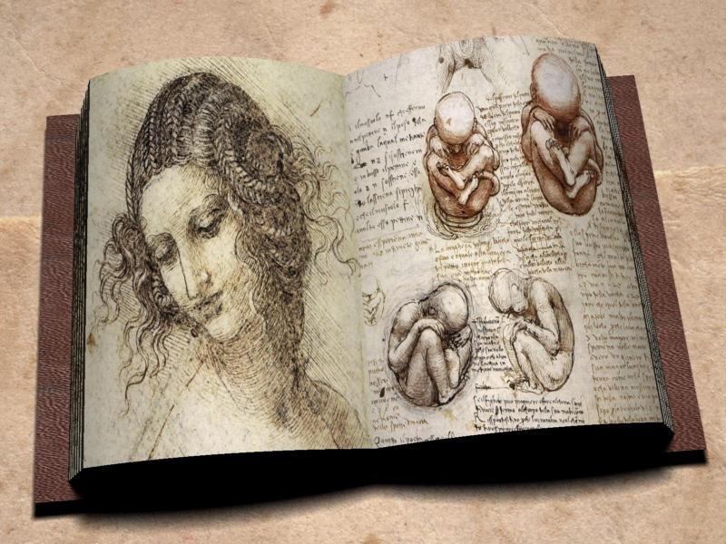 Da Vinci's Notebook by Dreimond