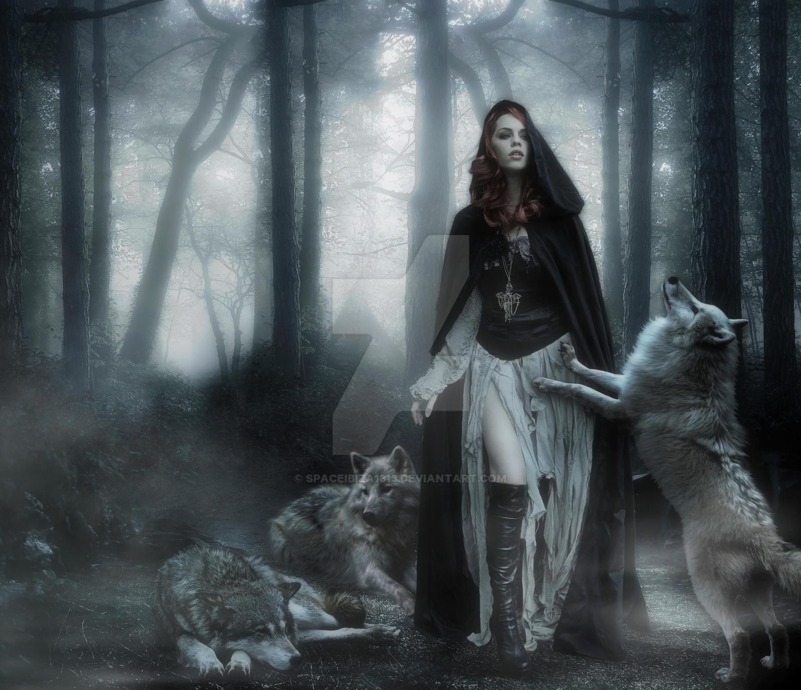 Šta je pisac hteo da kaže? - Majacvet - Page 3 Dances_with_wolves____by_spaceibiza1313-d5gkb61