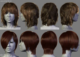 2014 - 2 New Hairstyles by Woodys3d