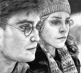 Harry and Hermione - HBP