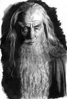 Gandalf the Grey by leiaskywalker83