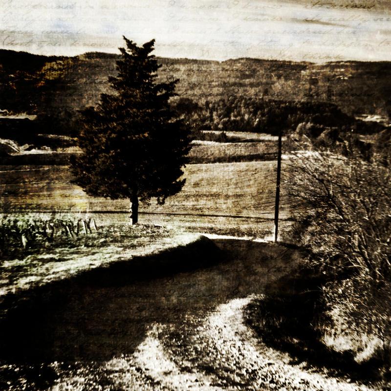 Blackfield No.2 by NEOkeitaro