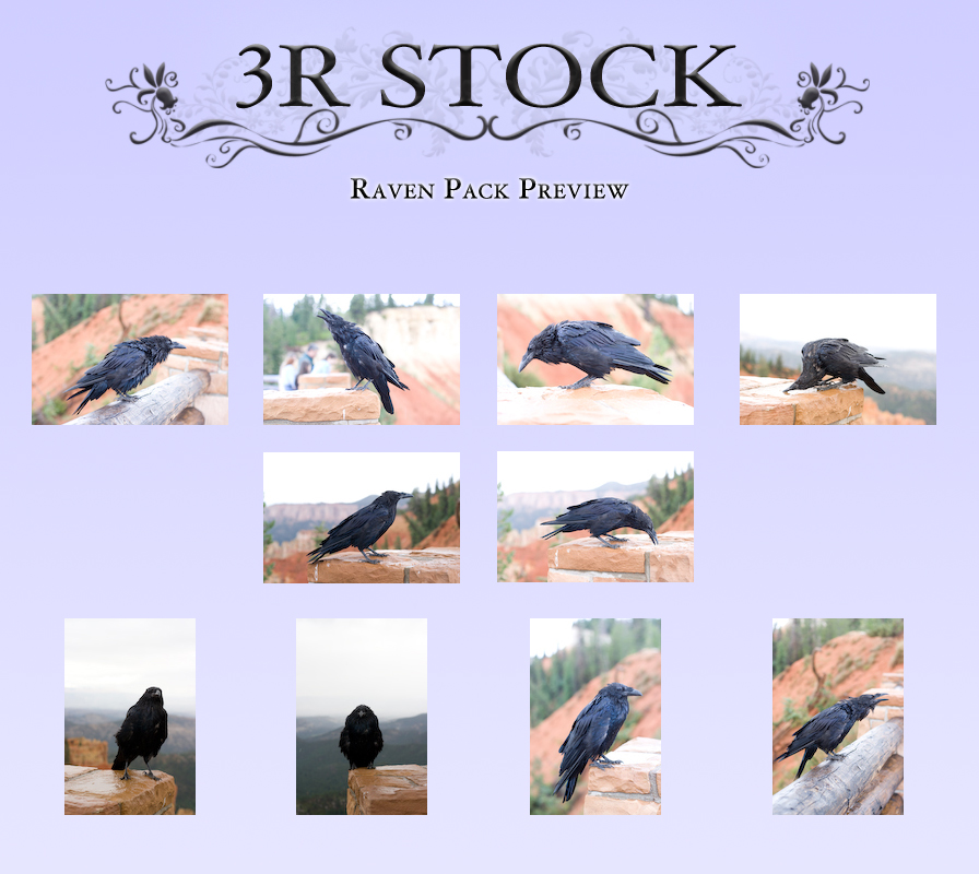 Raven Pack Preview by NEOkeitaro