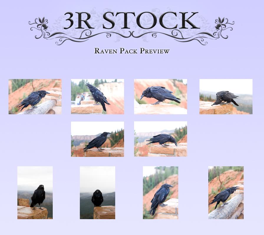 Raven Pack Preview by NEOkeitaro