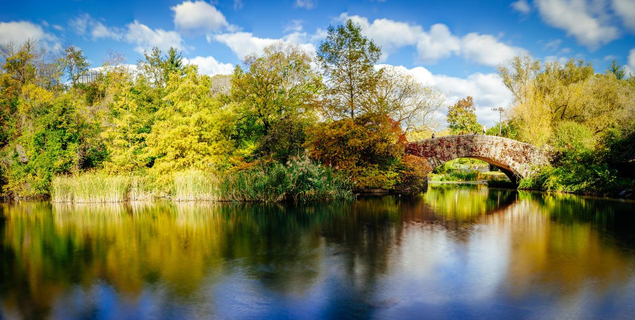 Fall In Central Park by NEOkeitaro