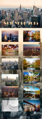 NEW YORK - 2015 CALENDAR