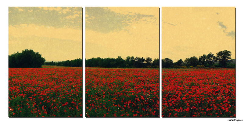 Vintage Country Triptych by NEOkeitaro